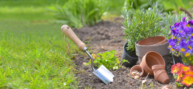 Gardening is as beneficial on a psychological level